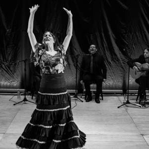 shows feira flamenca